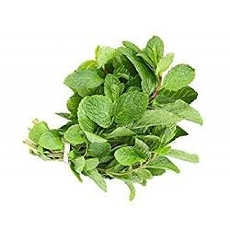 Mint leaves/PUDINA - 200GRAMS