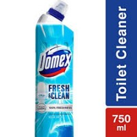 DOMEX FRESH & CLEAN- OCEAN FRESH 500ML