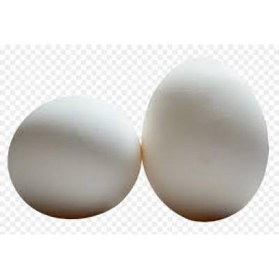 Eggs -Table Tray - 1Dozen (12 Eggs)